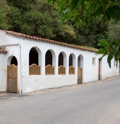 Fonte Santa Isabel